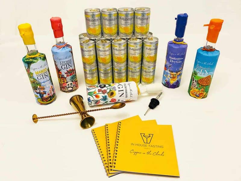 Rule of Six gin tasting party pack